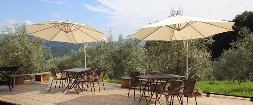 2019年NEW OPEN!香川で本格イタリアンランチを味わえる「OKI olive garden cafe」