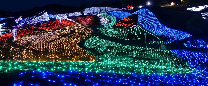 香川の冬を楽しむイルミネーションイベント!国営讃岐まんのう公園「ウィンターファンタジー」