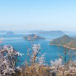 香川の春イベントはお花見で決まり!「おすすめ桜スポット10選」